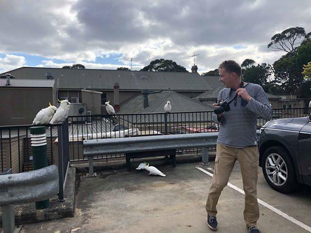 Kakadu w Australii